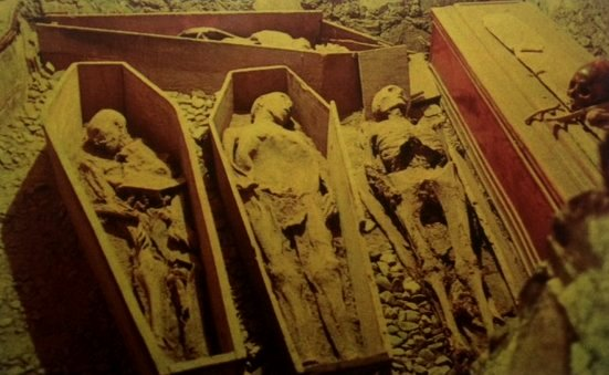 The mummies of St. Michan's